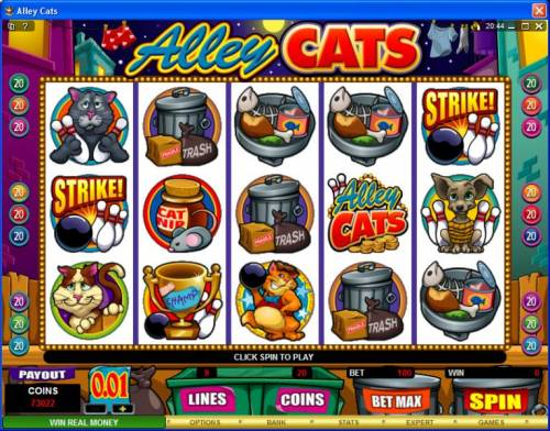 Alley Cats review on Big Bonus Slots