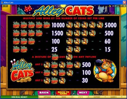 Alley Cats review on Big Bonus Slots