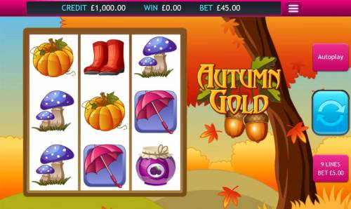 Autumn Gold Big Bonus Slots Main game board featuring three reels and 9 paylines with a $32,000 max payout.