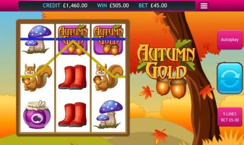 Autumn Gold Big Bonus Slots A pair of winning paylines