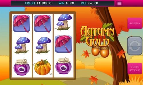 Autumn Gold Big Bonus Slots Bonus feature activated