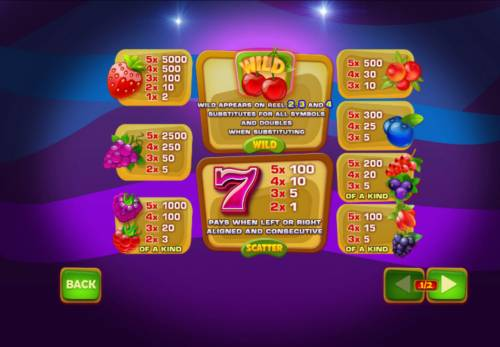 Berry Berry Bonanza Big Bonus Slots Paytable