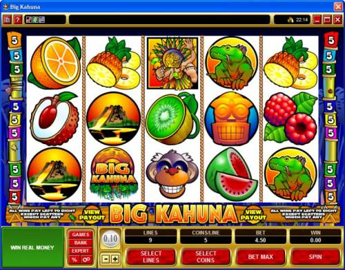 Big Kahuna review on Big Bonus Slots