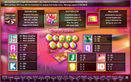 Bingo Slot Big Bonus Slots slot game symbols paytable