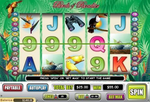 Birds of Paradise review on Big Bonus Slots
