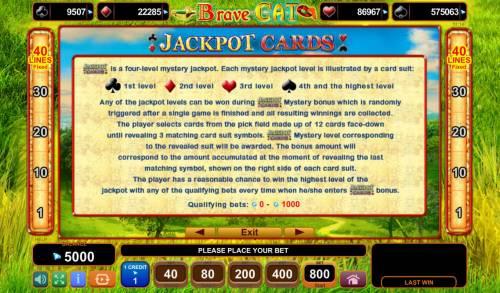 Brave Cat Big Bonus Slots Jackpot Cards Rules