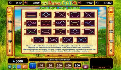 Brave Cat Big Bonus Slots Paylines 1-40