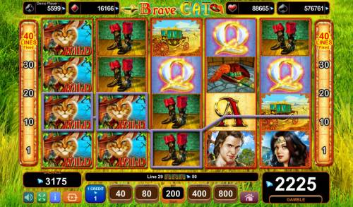 Brave Cat Big Bonus Slots Multiple winning paylines triggers a big win!