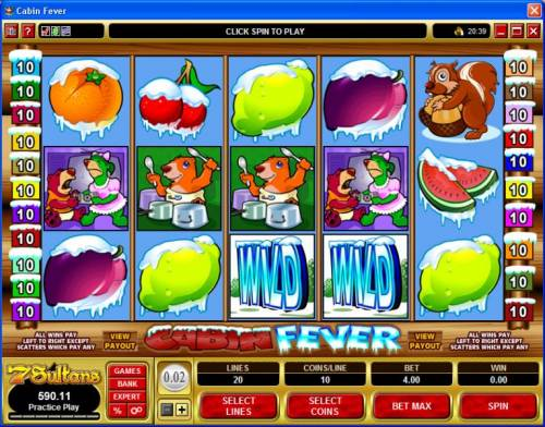 Cabin Fever review on Big Bonus Slots