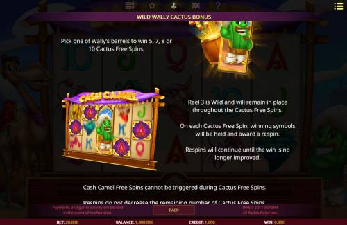 Cash Camel Big Bonus Slots Wild Feature Rules