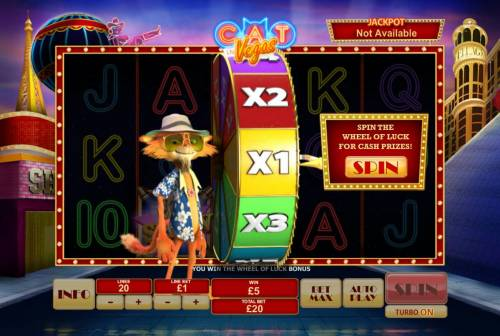 Cat in Vegas review on Big Bonus Slots