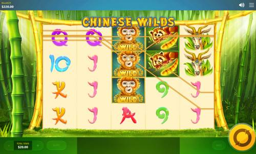 Chinese Wilds Big Bonus Slots Multiple winning paylines