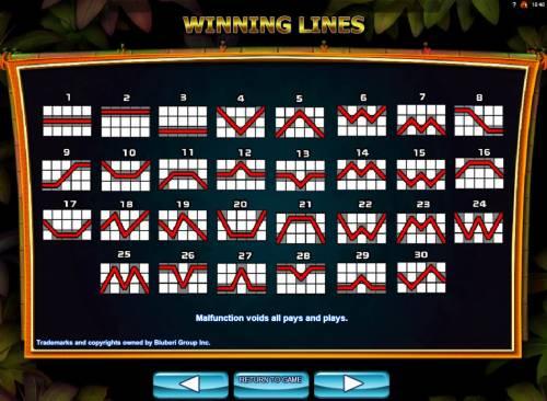 Conga Party Big Bonus Slots Paylines 1-30