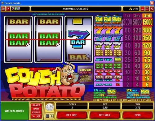Couch Potato review on Big Bonus Slots