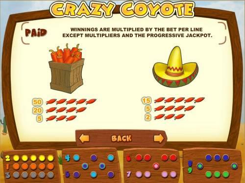 Crazy Coyote review on Big Bonus Slots