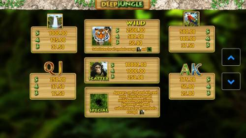 Deep Jungle Big Bonus Slots Slot game symbols paytable