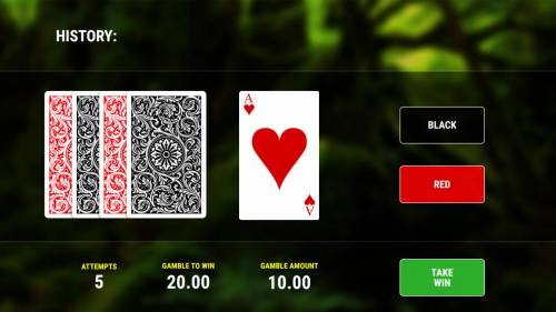 Deep Jungle Big Bonus Slots Gamble Feature - To gamble any win press Gamble then select Red or Black.