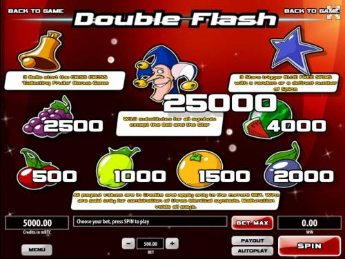 Double Flash Big Bonus Slots Slot game symbols paytable featuring classic fruit themed icons.