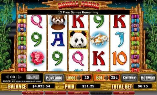 Double Panda Big Bonus Slots