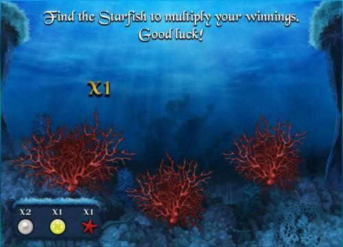 Empire of Seas Big Bonus Slots round three of the bonus feature - find the starfish