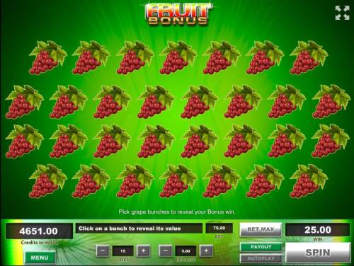 Fruit Big Bonus Slots Fruit Bouns Game Board - Select bunches of grapes to reveal your bonus win.