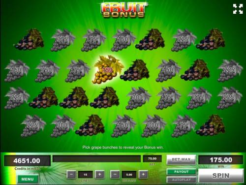 Fruit Big Bonus Slots Bonus fruit game play ends when you reveal 3 rotten bunches of grapes.