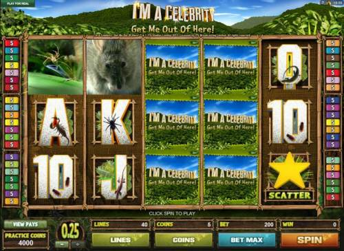 I'M A Celebrity Get Me Out Of Here! review on Big Bonus Slots