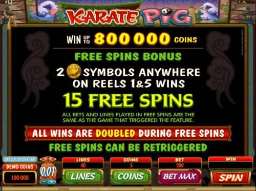 Karate Pig review on Big Bonus Slots