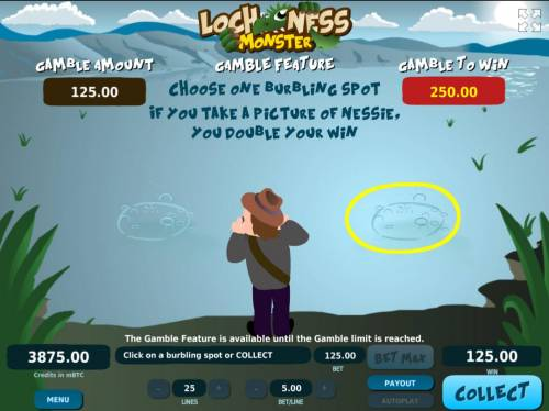 Loch Ness Monster Big Bonus Slots Gamble Feature - To gamble any win press Gamble then choose one burbling spot if you take a picture of Nessie, you double your win..