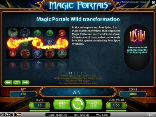 Magic Portals Big Bonus Slots wild tranformation feature rules