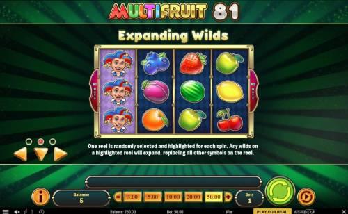Multifruit 81 review on Big Bonus Slots