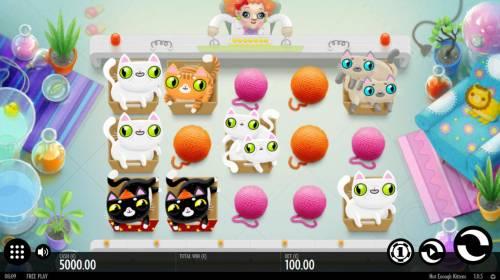 Not Enough Kittens review on Big Bonus Slots