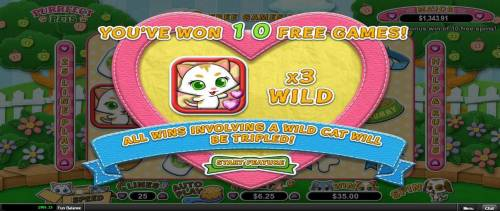 Purrfect Pets review on Big Bonus Slots