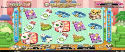 Purrfect Pets review on Big Bonus Slots
