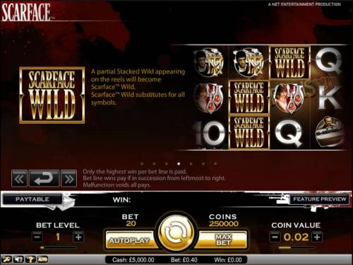 Scarface Big Bonus Slots Scarface slot game wild