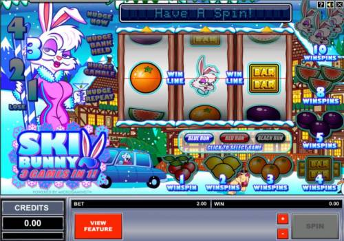 Ski Bunny review on Big Bonus Slots