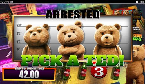 Ted Big Bonus Slots landing on the Arrested feature, player has to select 1 of 3 Teds.