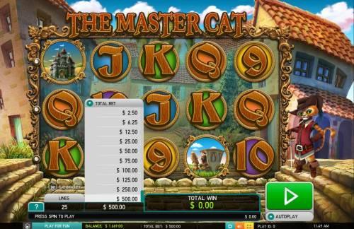 The Master Cat Big Bonus Slots Betting Options