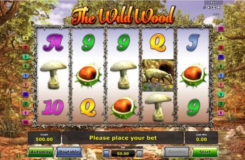 The Wild Wood review on Big Bonus Slots