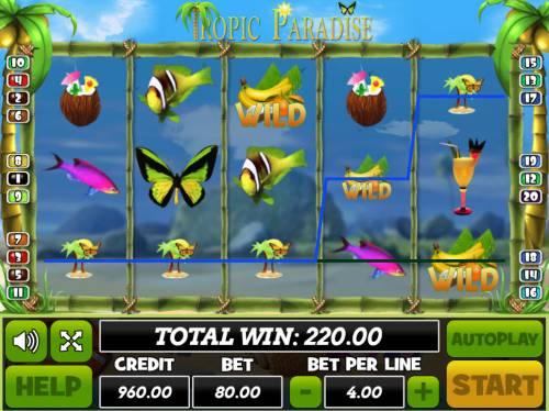 Tropic Paradise review on Big Bonus Slots