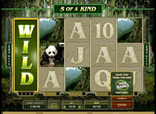 Untamed Giant Panda review on Big Bonus Slots