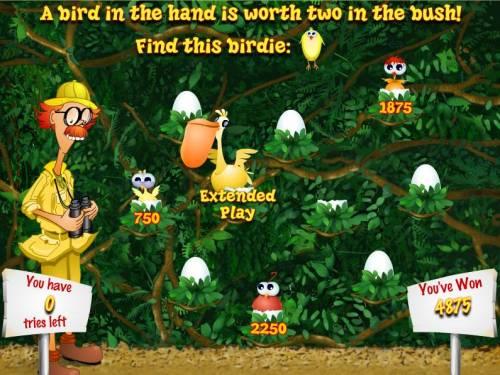 Watch the Birdie review on Big Bonus Slots