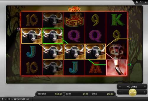 Wild Cobra review on Big Bonus Slots