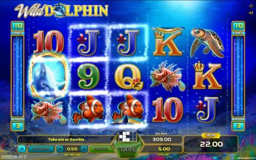Wild Dolphin Big Bonus Slots Multiple winning paylines