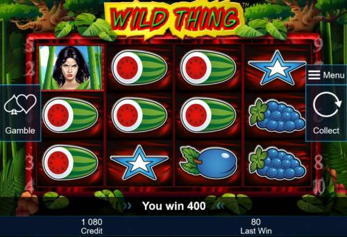 Wild Thing Big Bonus Slots A pair of winning paylines triggers a 400.00 win.