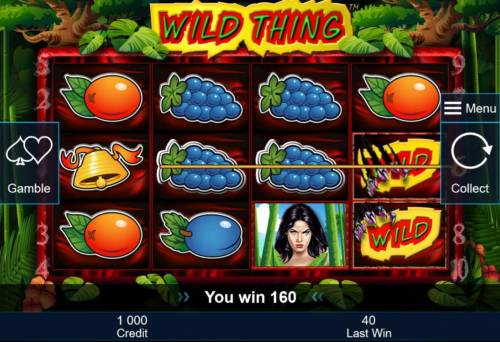 Wild Thing Big Bonus Slots A pair of winning paylines.