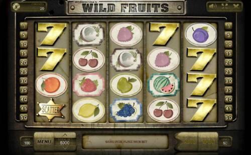Wild Fruits review on Big Bonus Slots