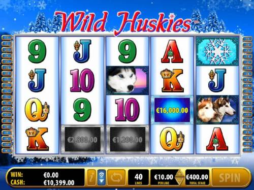 Wild Huskies review on Big Bonus Slots