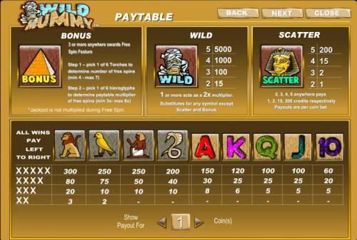 Wild Mummy Big Bonus Slots bonus, wild, scatter and slot game symbols paytable