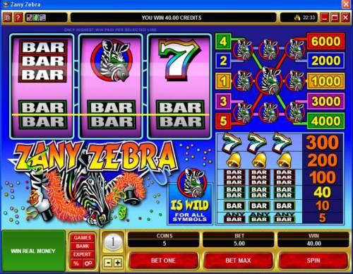 Zany Zebra review on Big Bonus Slots